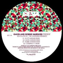 Gavin & Robbie Hardkiss Present...Revolution - The Hardkiss Remixes